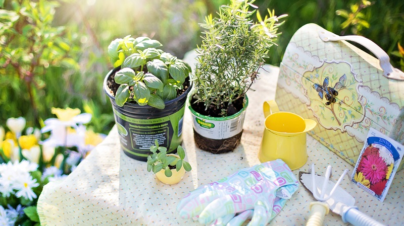 Getting your garden in tip-top condition